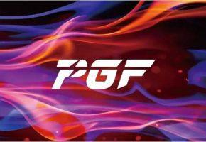 NVIDIA GTX 1080 PGF (2)
