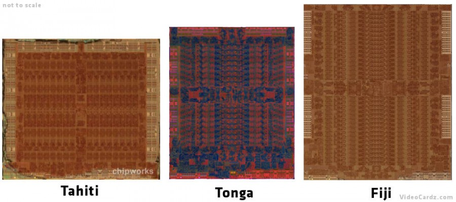 Tahiti vs Tonga vs Fiji dieshots