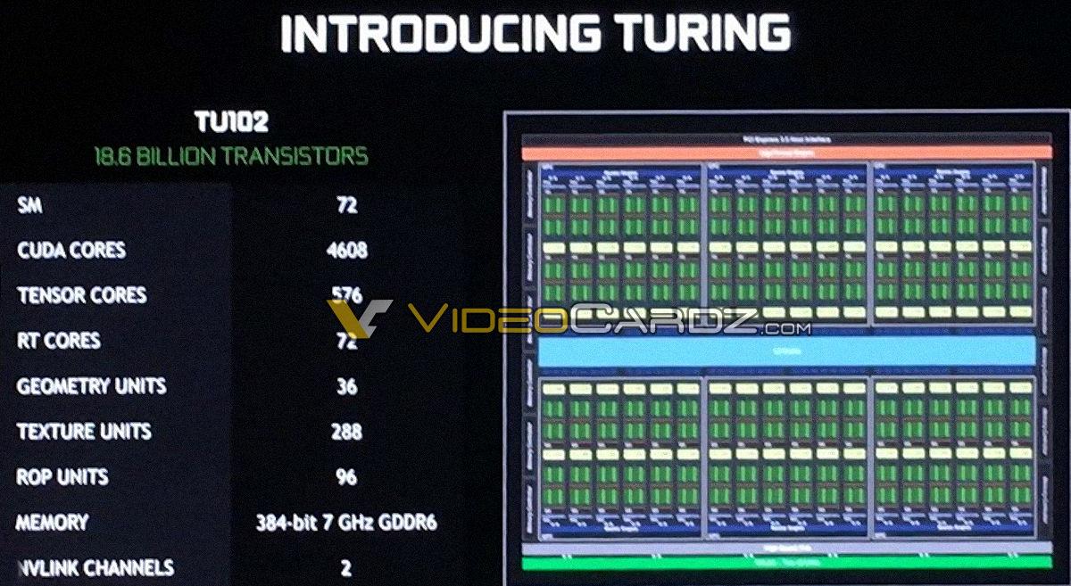 Exclusive  Nvidia Geforce Rtx 2080  Ti  Editors U0026 39  Day Leaks